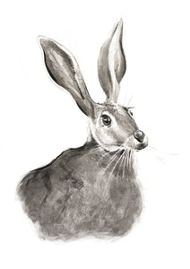 Hare Greeting Card - About Face Illustration