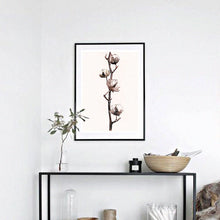 Cotton Plant Watercolour Print