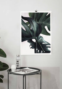 Monstera Deliciosa Watercolour Print - About Face Illustration