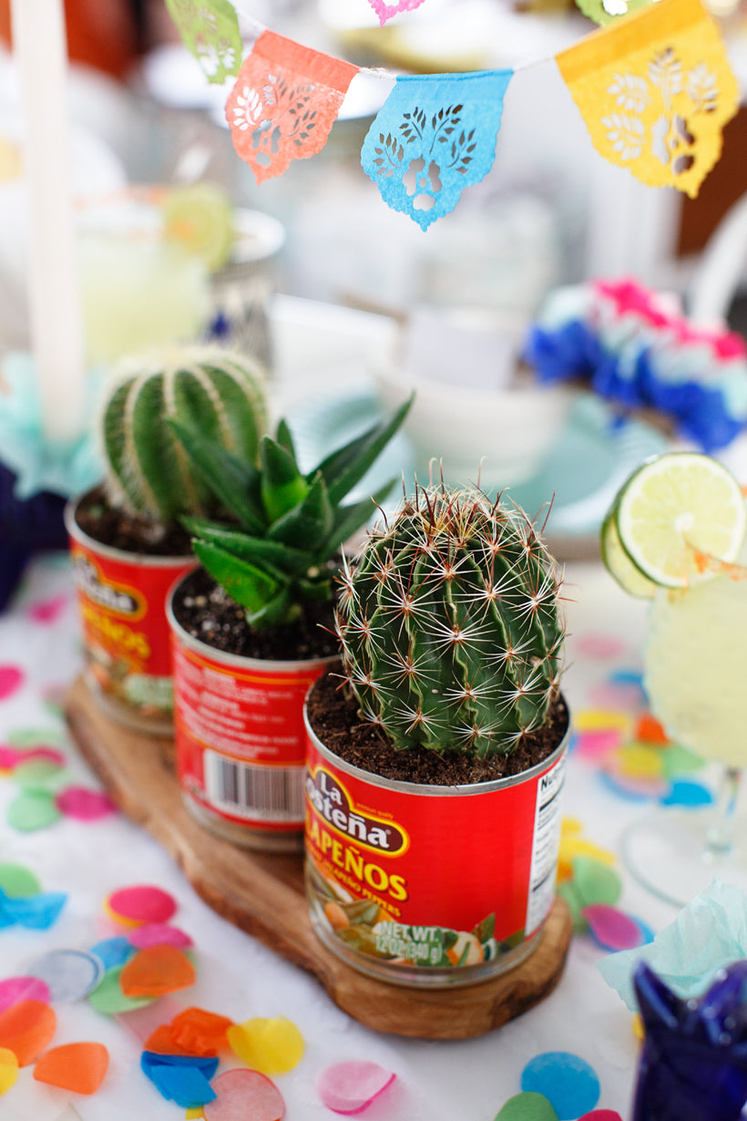 Cinco de mayo cactus centerpiece