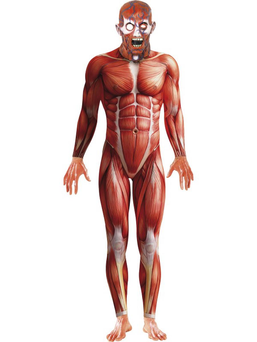 2-PC-Men's-Scientific-Anatomy-Muscular-System-Bodysuit-&-Mask-Costume