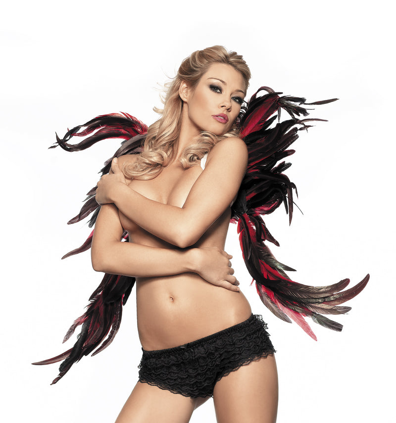 Adult-Women's-Black-&-Red-Fallen-Angel-Feather-Wings-Novelty-Party-Halloween-Costume-Accessory