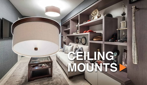 Ceiling Mount Light Fixtures