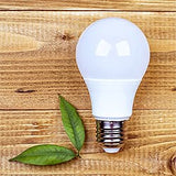 LED Bulb Lumen and Brightness Explanation