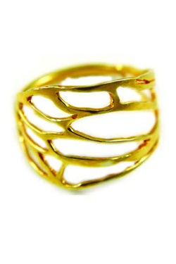 Cicada Ring in 14k Gold - Good Cloth