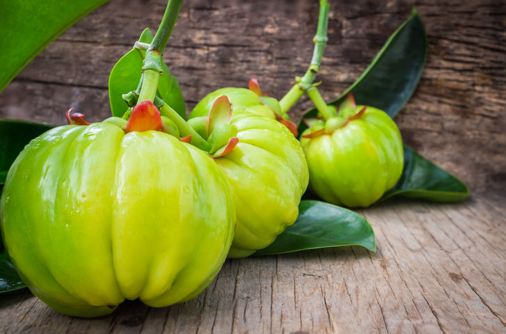 Taking Garcinia to the Next Level for Advanced Weight Management