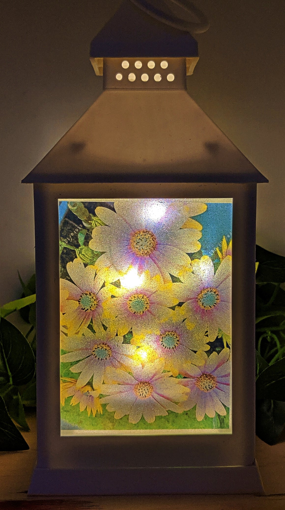 Daisy Delight LED Lantern