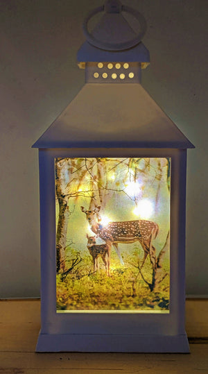 Nature Themed LED Lantern