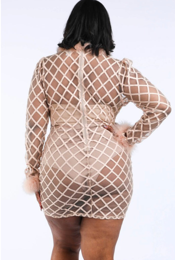 Curvy Nude Mesh Feather Dress - Mint Leafe Boutique