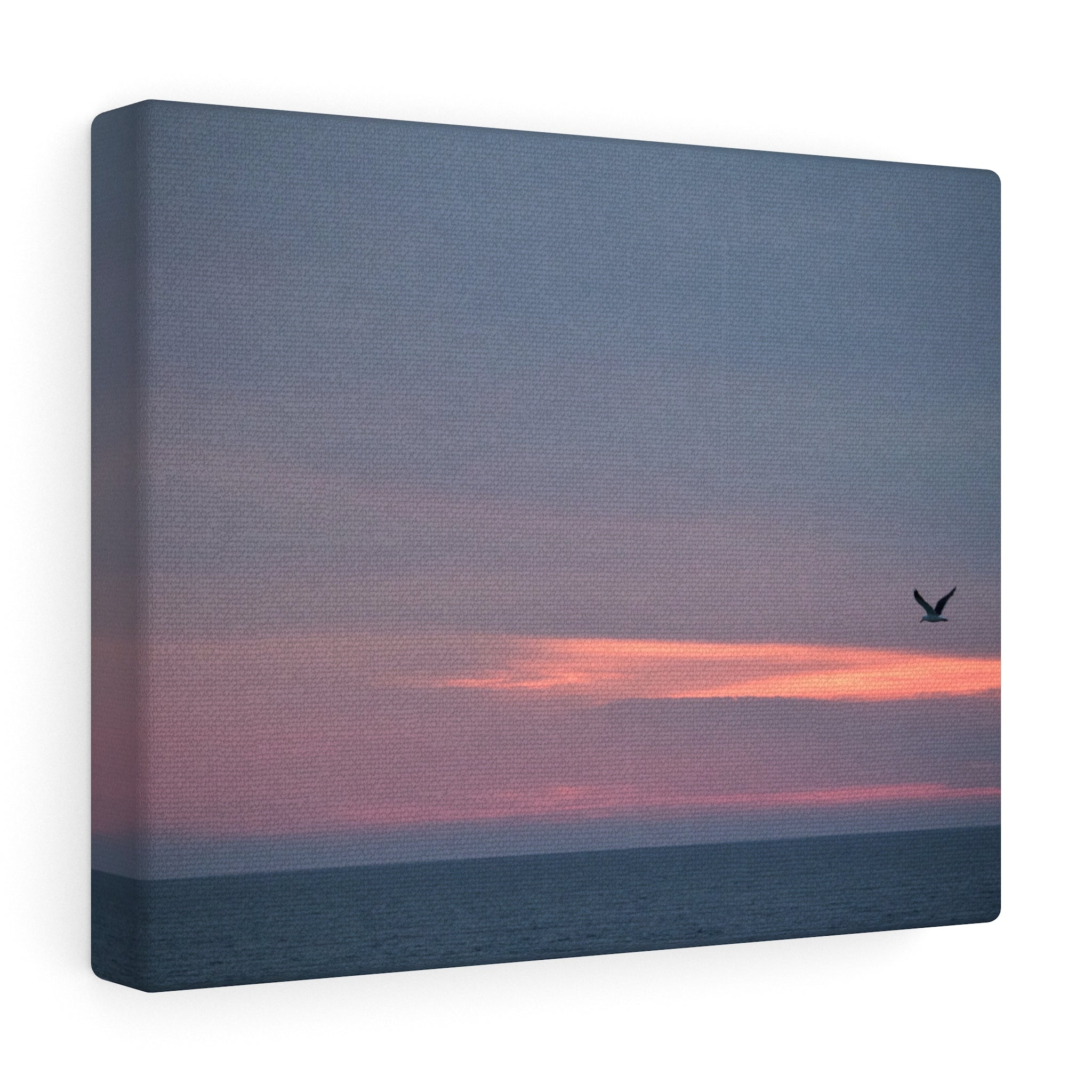 Nantucket Seagull Sunset Canvas Gallery Wrap