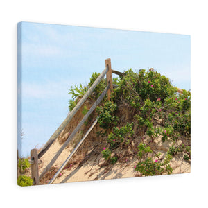 Weathered Fence Sand Dune Canvas Gallery Wrap