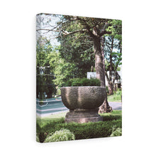 The Olmstead Lane Trough Canvas Gallery Wrap