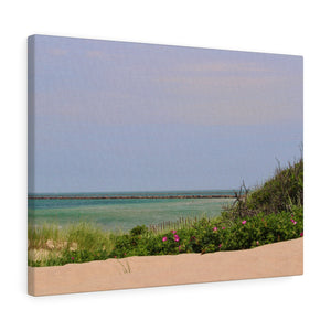 Flowered Sand Dunes Canvas Gallery Wrap