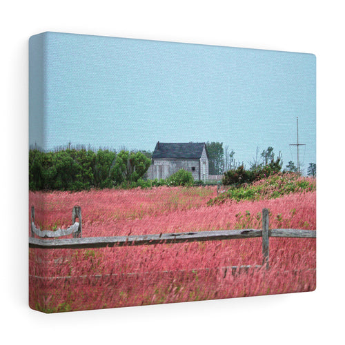 Strawberry Colored Field Canvas Gallery Wrap