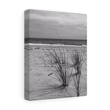 The Way the Wind Blows Monochrome Canvas Gallery Wraps