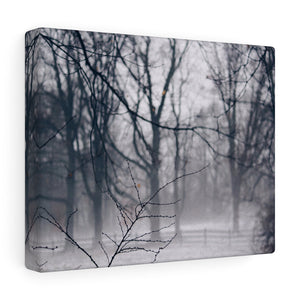 Fog Covered Field II Canvas Gallery Wrap