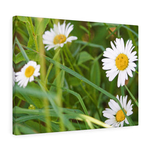 Nature Smiles Back Canvas Gallery Wrap