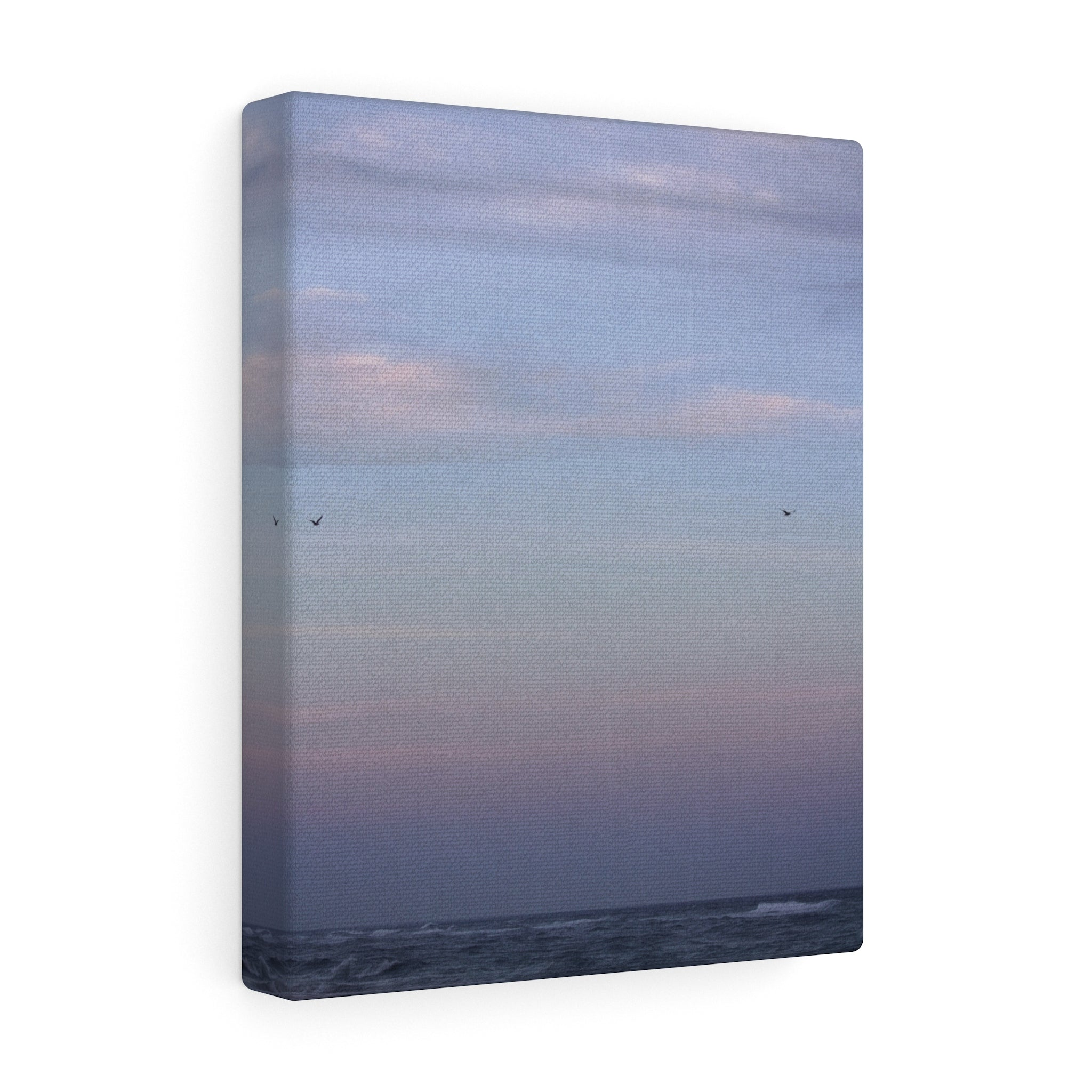 Salty Air Canvas Gallery Wrap