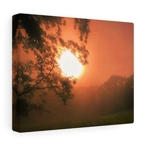 Morning Fog Canvas Gallery Wrap