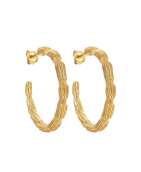 Alor Hoops / Gold
