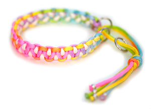 Paracord collar rainbow martingale