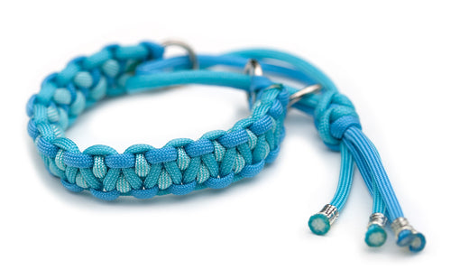 Paracord collar blue turquoise martingale