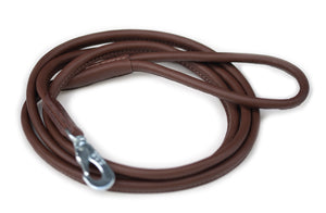 Brown regular dog walking lead