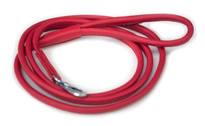 Red regular dog walking lead