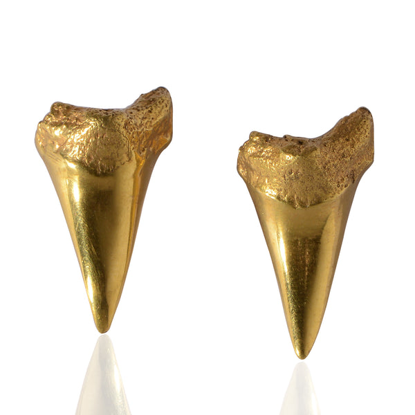 SHARKTOOTH EARTOPS