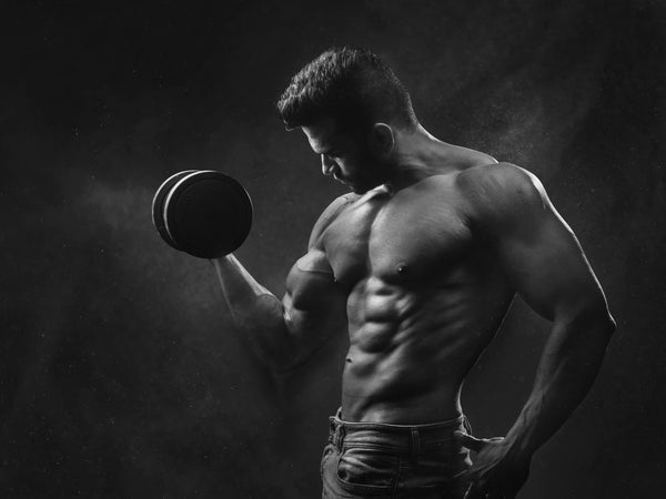 Free Basic Male Diet and Training Plans