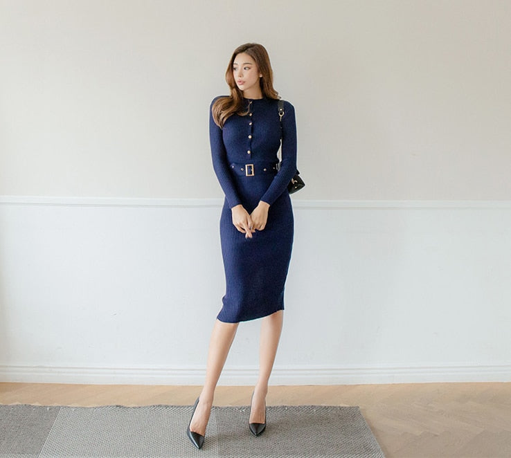 Autumn Winter Office Lady Bodycon Dress Creationsg