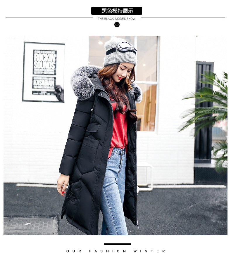 Newest Winter Jacket Women Fashion Coat - Creationsg