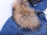 creationsg - VooBuyLa Brand Fashion Plus Size 6XL Denim Jacket With Raccoon Fur Collar