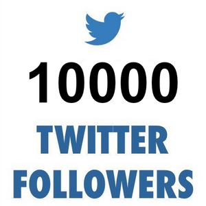10000 Twitter Followers