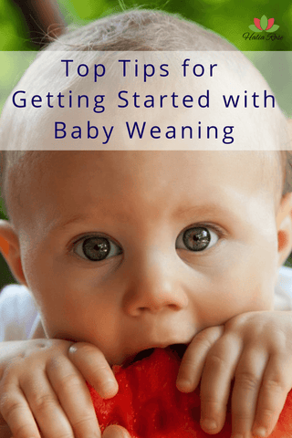 Halia_Rose_Best_teething_necklace_baby_weaning_chewing