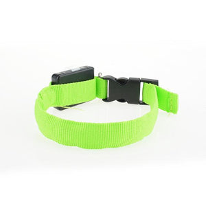 Led Light Glow Collar