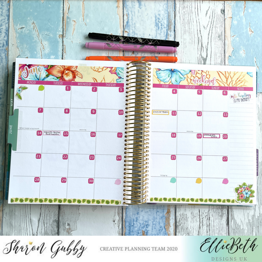 Erin Condren Hourly Monthly layout with EBDUK stickers