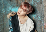BTS Character's Posters - BTS Merch