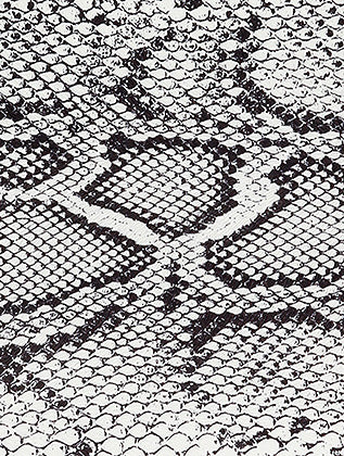 White Snake Print Vinyl Clutch Bag Accessory