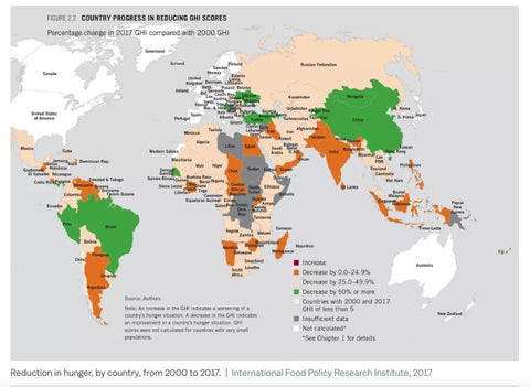 World Hunger Map