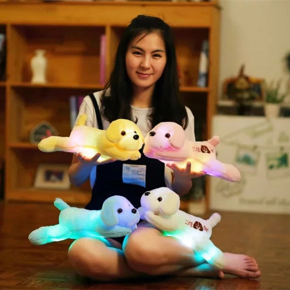 Luminous colored Plush Dog Toys
