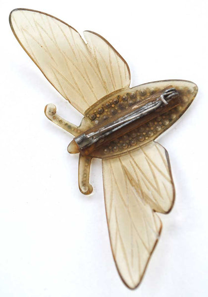 1900s French Nouveau Carved Horn Moth Cicada Brooch with Rhinestones