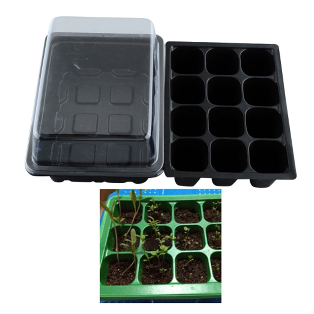 Seed Germination Kit with Humidity Dome