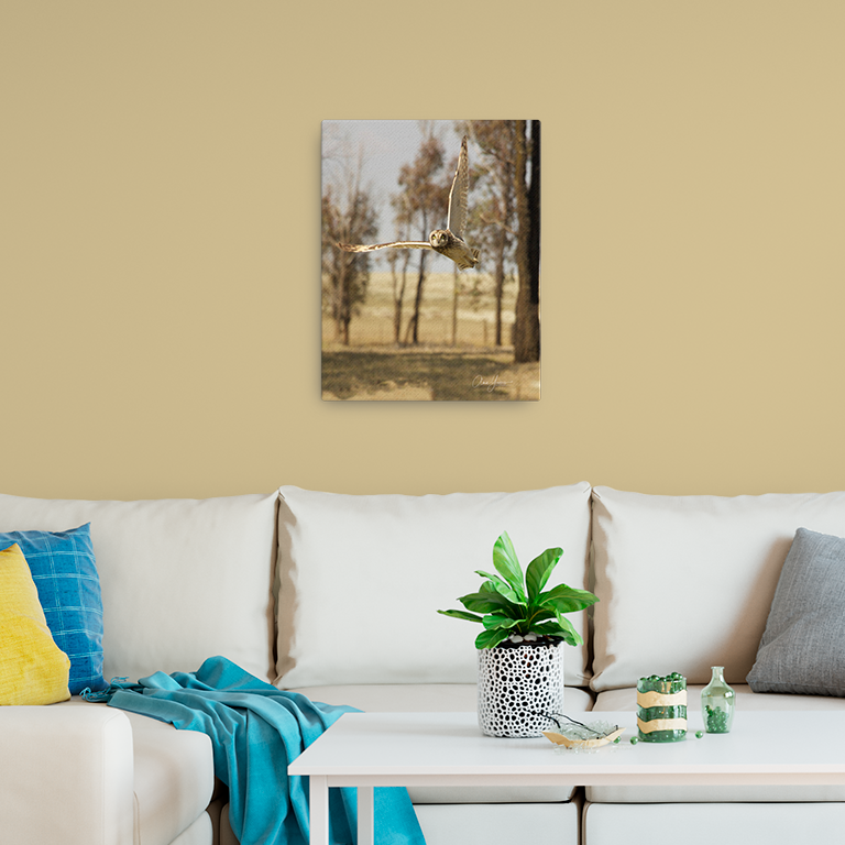 Up and Away - Giclée Photo Canvas Print - Size: 12x16