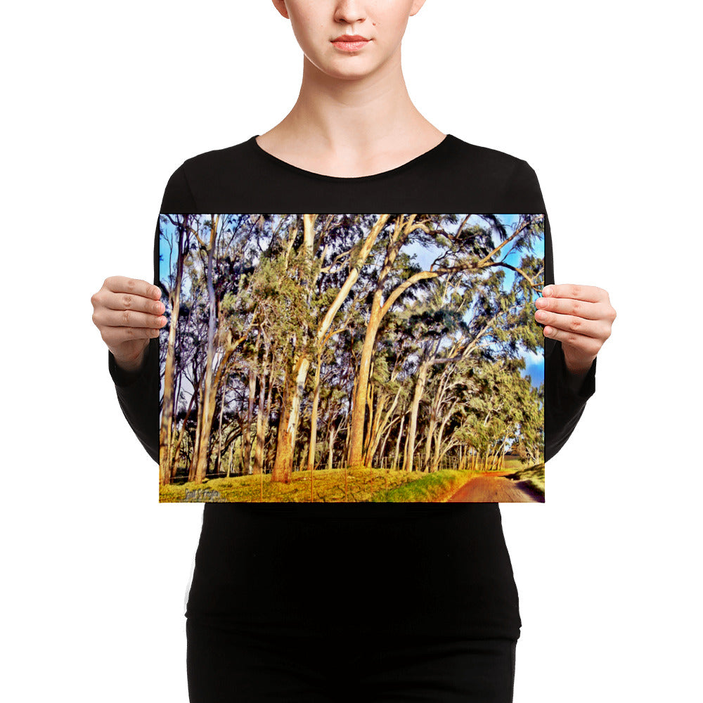Mana Road Photo Giclée Canvas Print- Size: 12x16 (Wrap Size) - Shella Island Products,, Canvas Prints - Yoga Leggings, Shella Island Products - Asana Hawaii