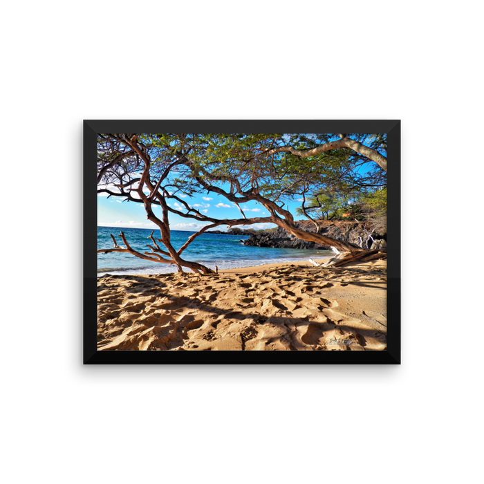 WAIALEA BAY BEACH 69S  On Framed photo print