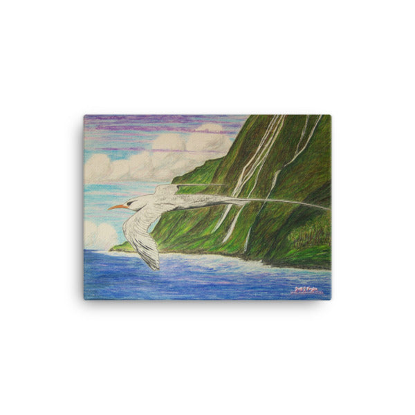 "KOA'E'KEA ""WHITE TAIL TROPICBIRD""(Full Giclée Canvas Print) SIZE: 12x16 - Shella Island Products,, Canvas Prints - Yoga Leggings, Shella Island Products - Asana Hawaii"