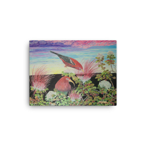 'I'IWI LEHUA PU'U O'O MORNING RISE Giclée Canvas Print- Size: 12x16 (One of a Three panel triptych) - Shella Island Products,, Canvas Prints - Yoga Leggings, Shella Island Products - Asana Hawaii
