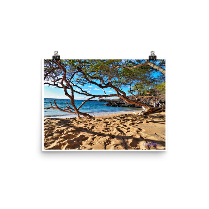 Beach 69s on Glossy Photo Paper Print Size: 12x16 in - Shella Island Products,, Photo Print - Yoga Leggings, Shella Island Products - Asana Hawaii