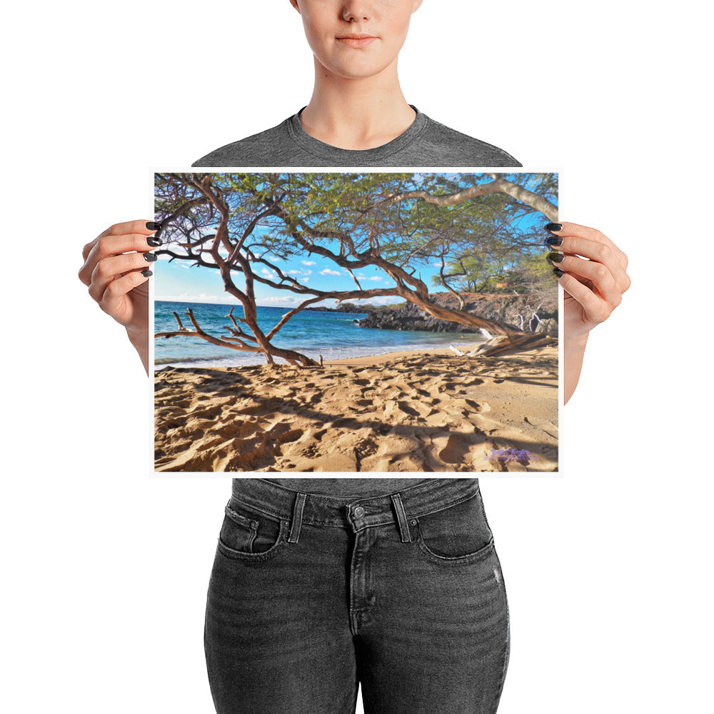 Beach 69s on Glossy Photo Paper Print Size: 12x16 in